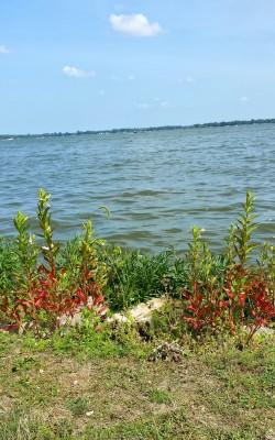 Indian Lake 11