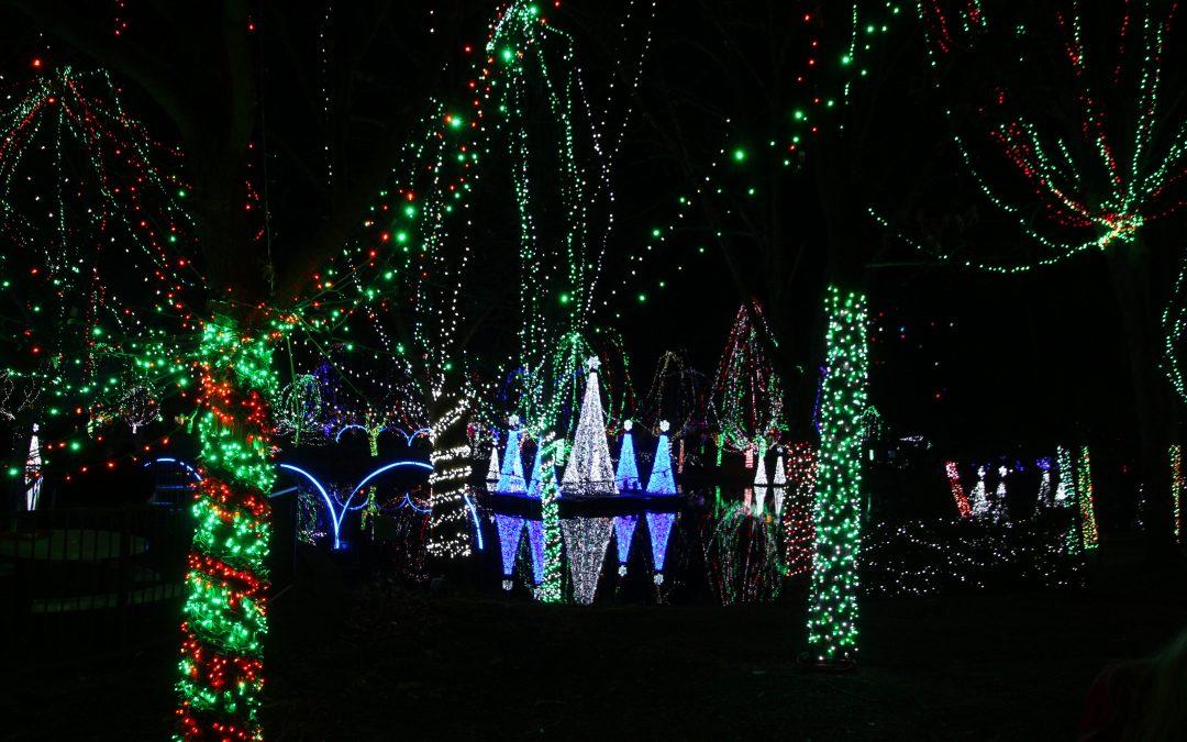 Columbus Zoo Wildlights