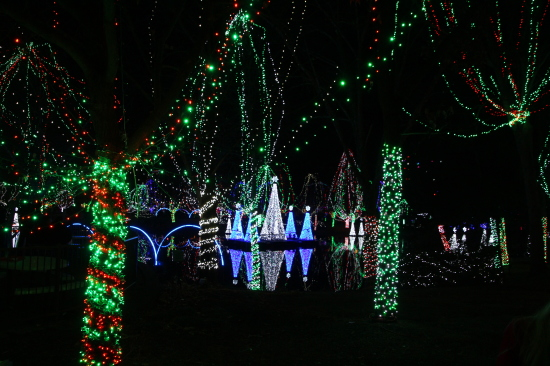 Columbus Zoo and Aquarium Wildlights