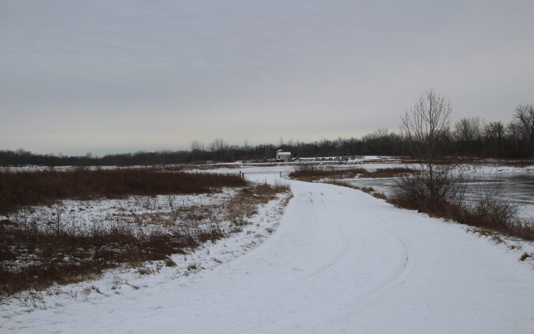 Prairie Oaks Metro Park Winter Hike