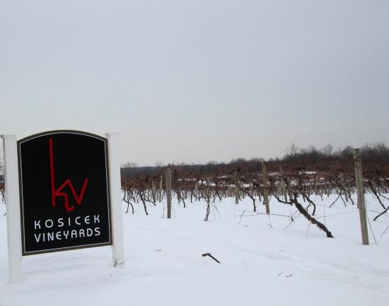 NE Wine 17