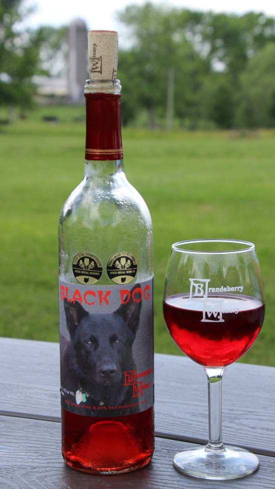 Brandeberry Winery ~ www.ohiogirltravels.com