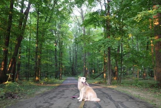 Summer Hikes~www.ohiogirltravels.com
