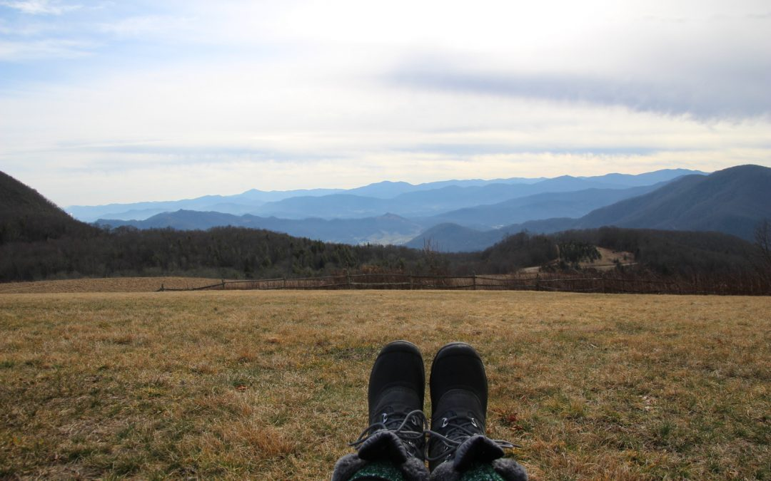 Hiking Purchase Knob in the Smoky Mountains