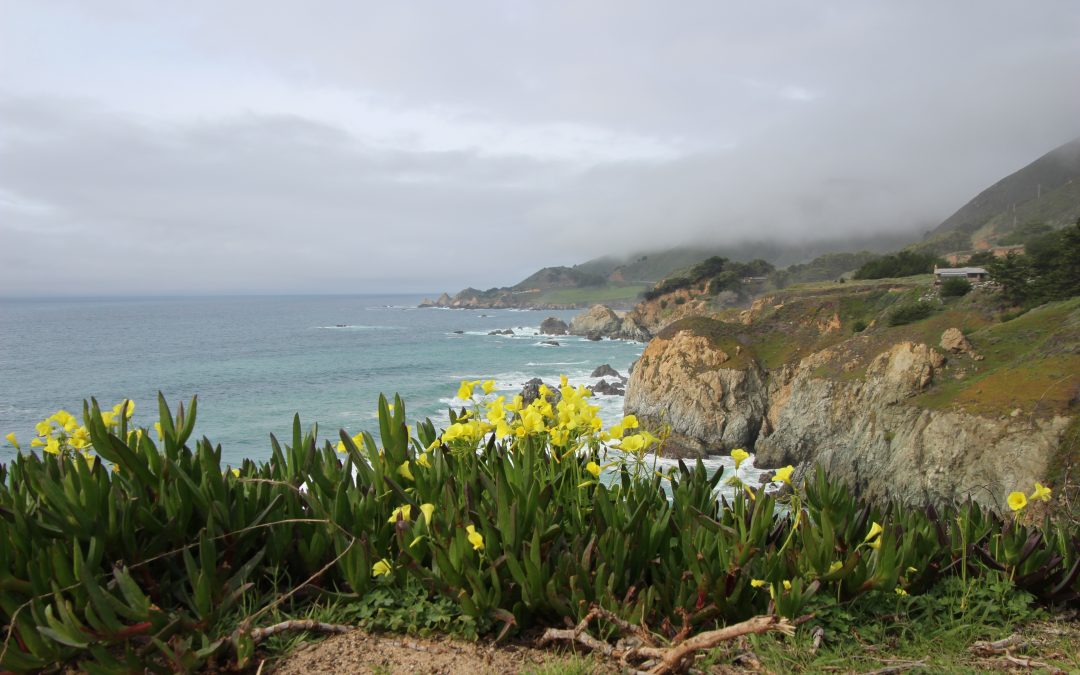 7 Reasons to Visit Monterey County, California
