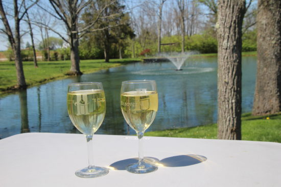 Hanover Winery ~ www.ohiogirltravels.com