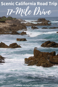 Your trip to Monterey, California wouldn't be complete without doing the 17-Mile drive. The scenic coastline views and vistas to see wildlife were incredible. This is one road trip you WILL NOT want to miss when you're in California. Save this scenic road trip to your travel board! #17miledrive #california #monterey
