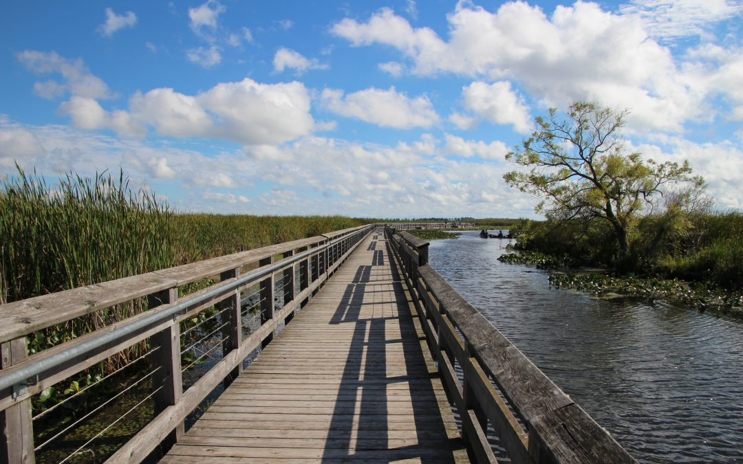 7 Reasons to Visit Essex County, Ontario