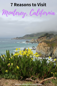 Monterey, California is incredibly breathtaking filled with amazing food, drinks, scenery and much more. We could name hundreds of reasons to visit Monterey, California, but these are our top 7. Don't forget to save this pin to your travel board! #monterey #california