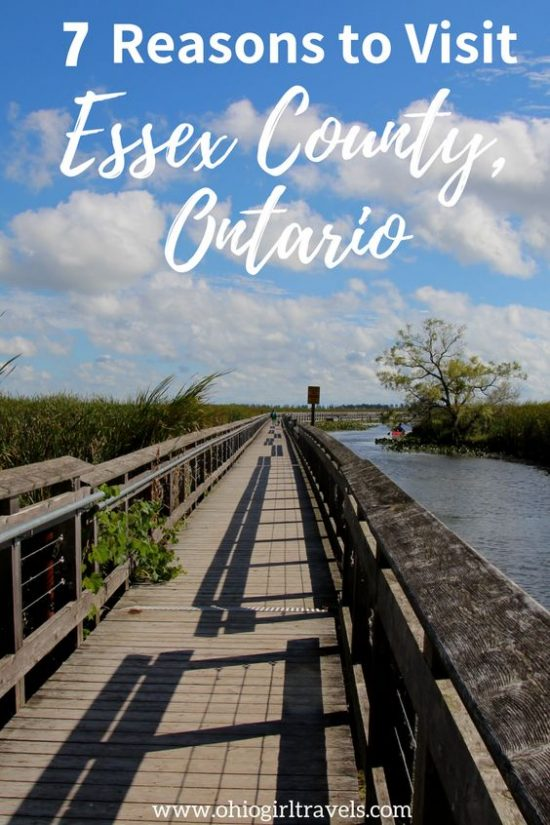 If you haven't been to Essex County, Ontario, Canada, you need to plan a trip there right now! We absolutely loved Essex County and we can't wait to make it back there again soon. There were so many awesome things to do, see (Windsor and Point Pelee National Park), and eat in Essex County! Don't forget to save this guide to Essex County to your travel board.  Canada Travel. #essexcounty #ontario #canada