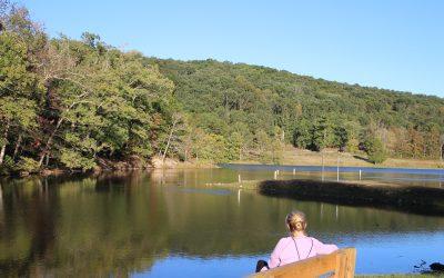 Exploring Shawnee State Park & Shawnee Lodge