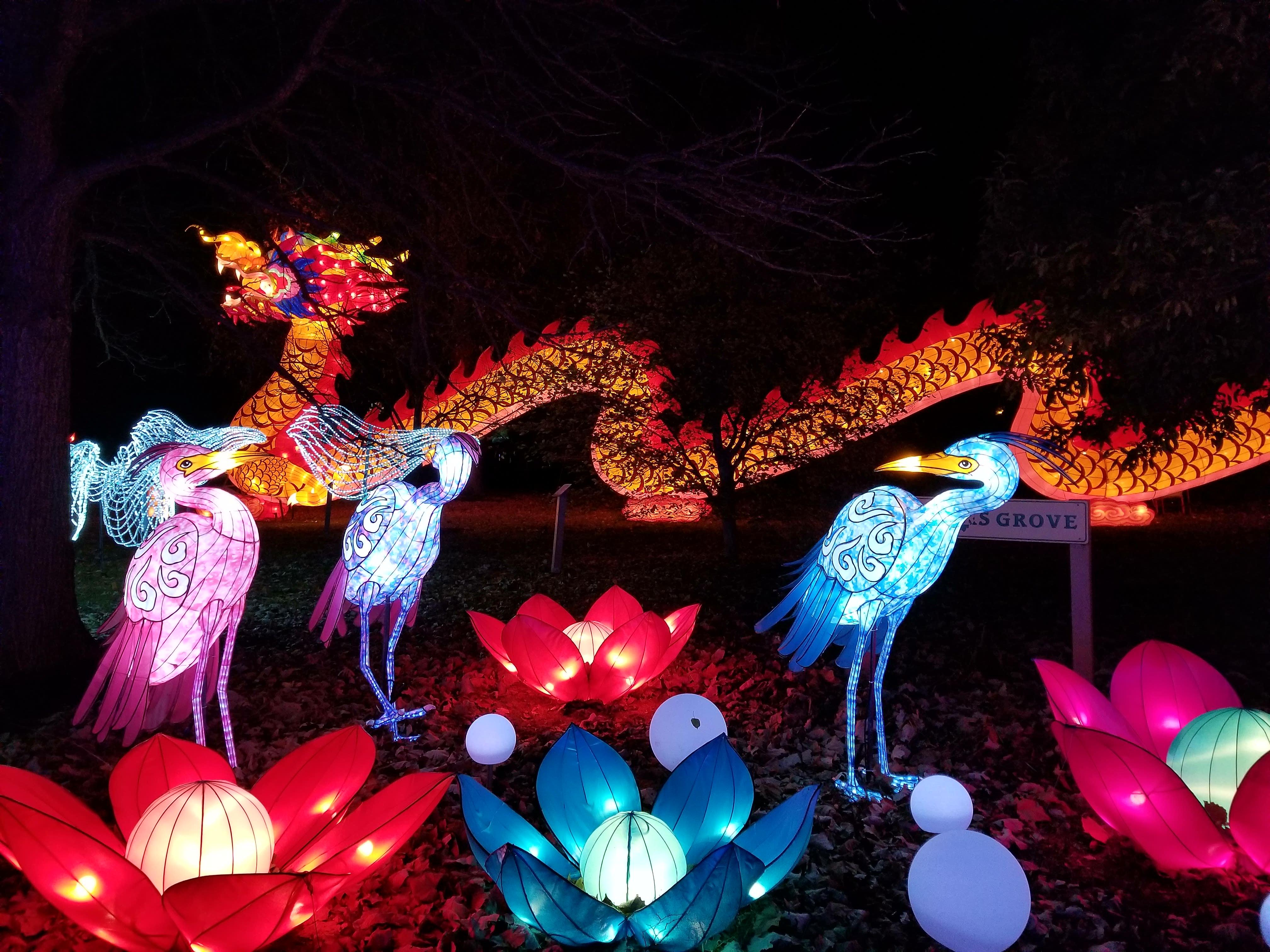 Best Christmas Lights Displays In Ohio Ohio Girl Travels