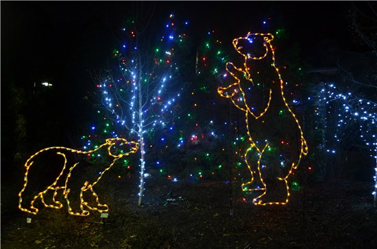 Akron Zoo Wild Lights - Best Christmas Lights Displays In Ohio Ohio Girl Travels