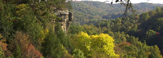 Conkles Hollow in Hocking Hills, Ohio