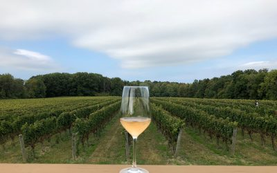 Exploring Ohio Wine Country in Ashtabula County