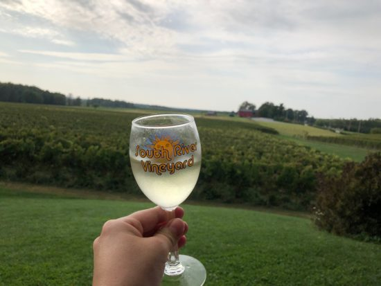 South River Vineyard in Ashtabula County, Ohio