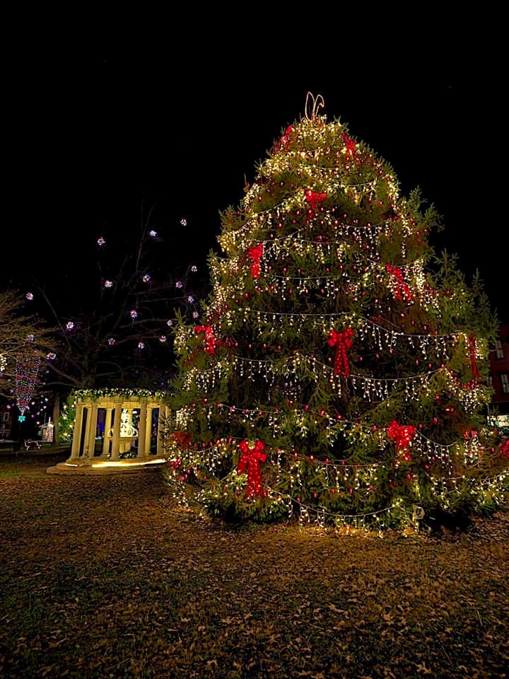 Gallipolis In Lights Tree