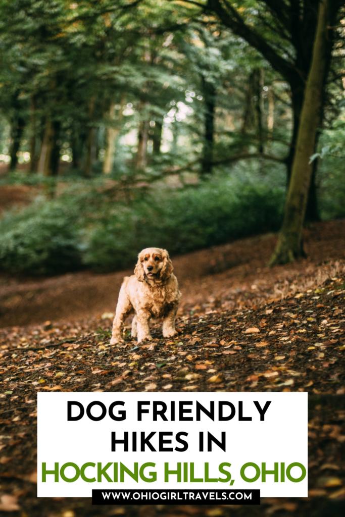 Hocking Hills pet friendly trails